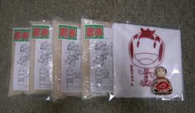 2011yokohama_kuji_get