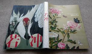 160512jyakucyu_hon_hyoushi