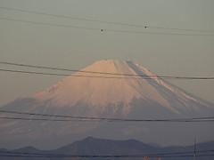 170101gantan_fuji